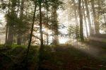 05b_Herbststimmung_auf_dem_Klimaweg